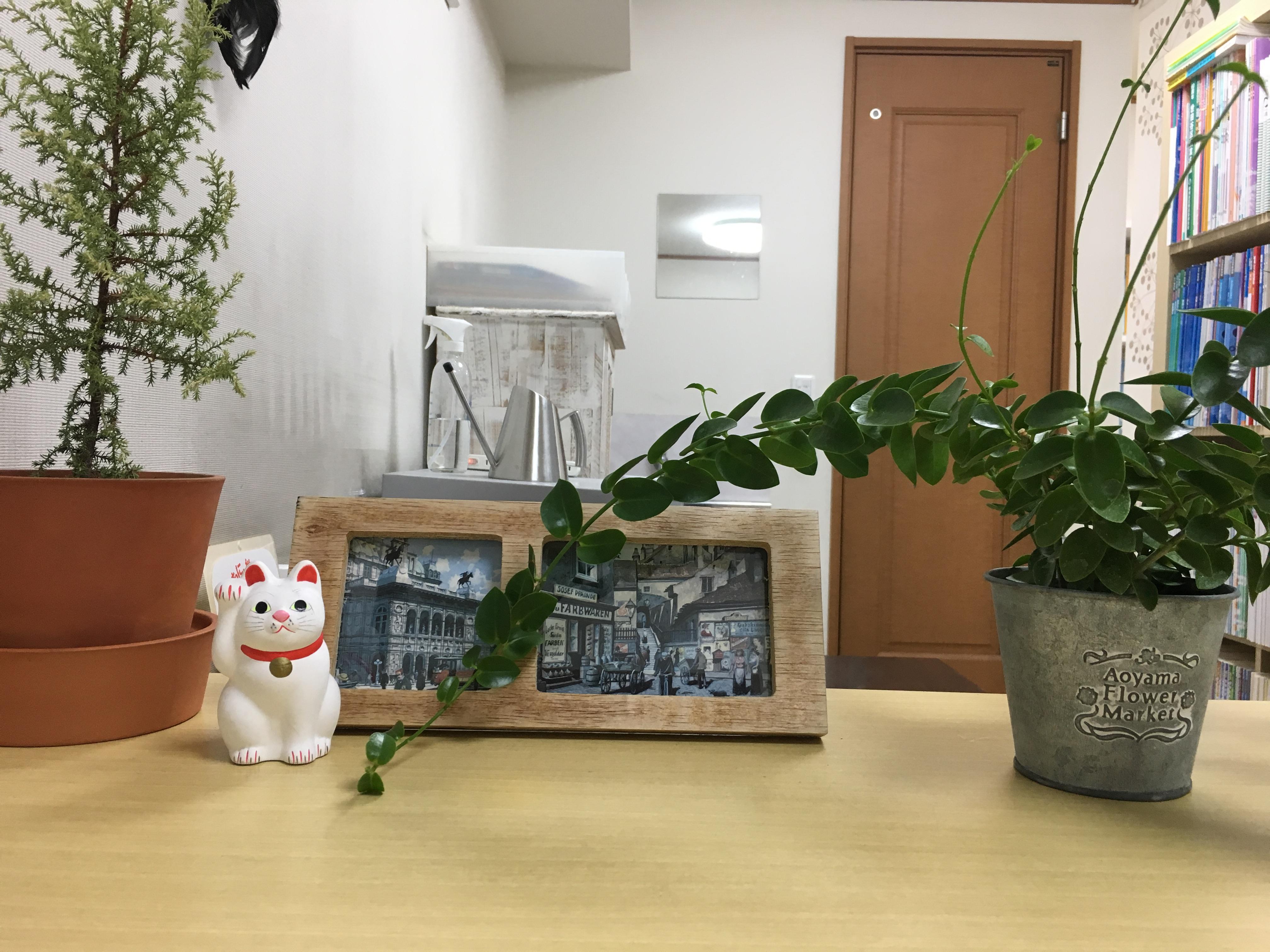 【学習教室キートス】世田谷区小田急線豪徳寺駅徒歩1分の個別指導進学塾の画像